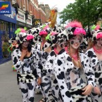 COW AT THE CARNIVAL!